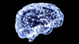 cervello-e1436778947874-300x169
